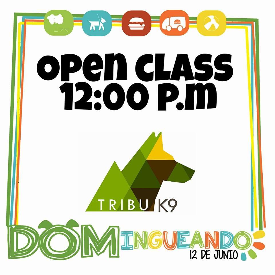 domingueando - tribu k9.jpg