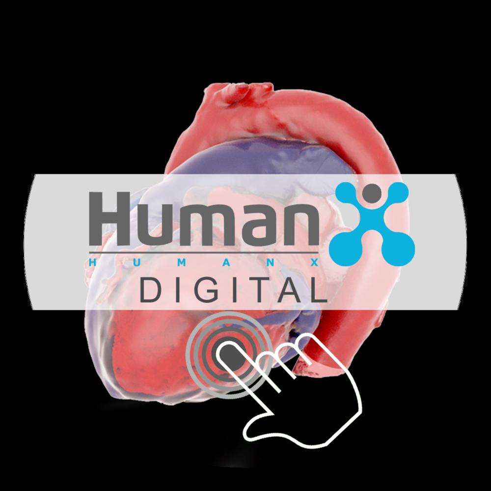 Link zu HumanX Digitalmodellen