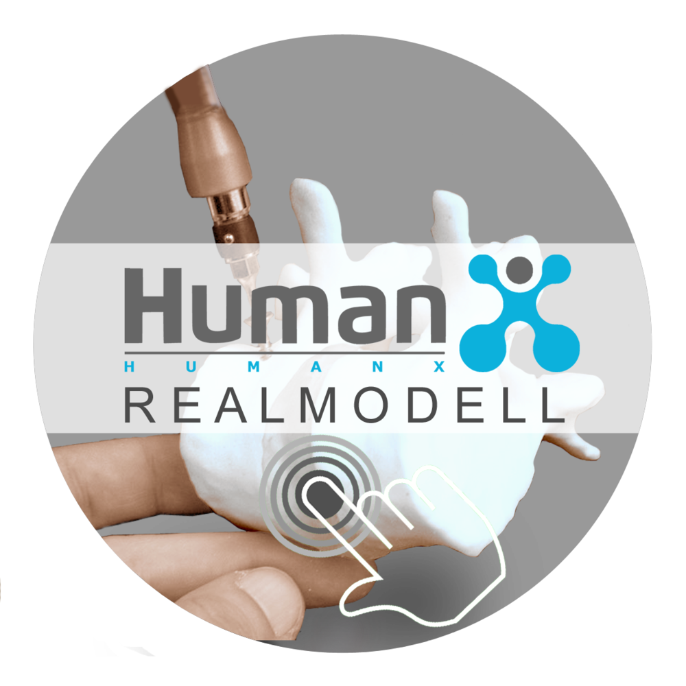Link zu HumanX Realmodell