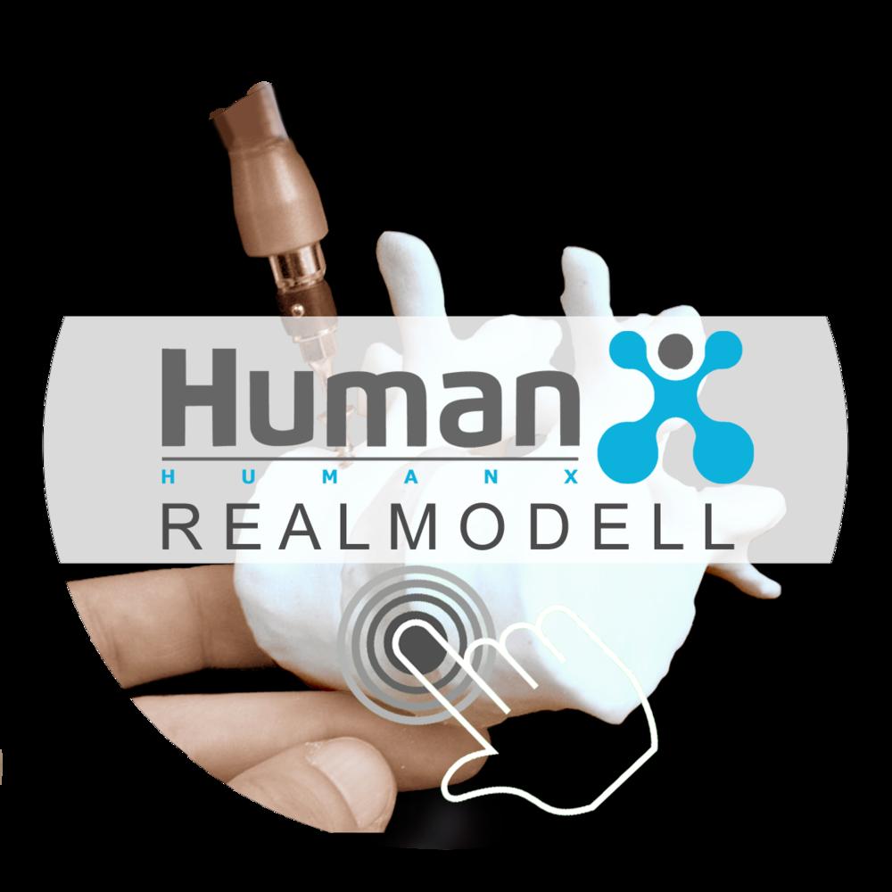 Link zu HumanX Realmodell