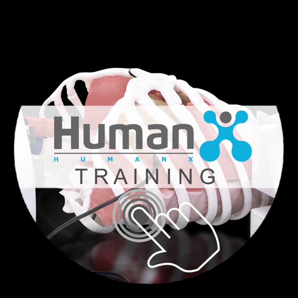 Link Training Simulators HumanX