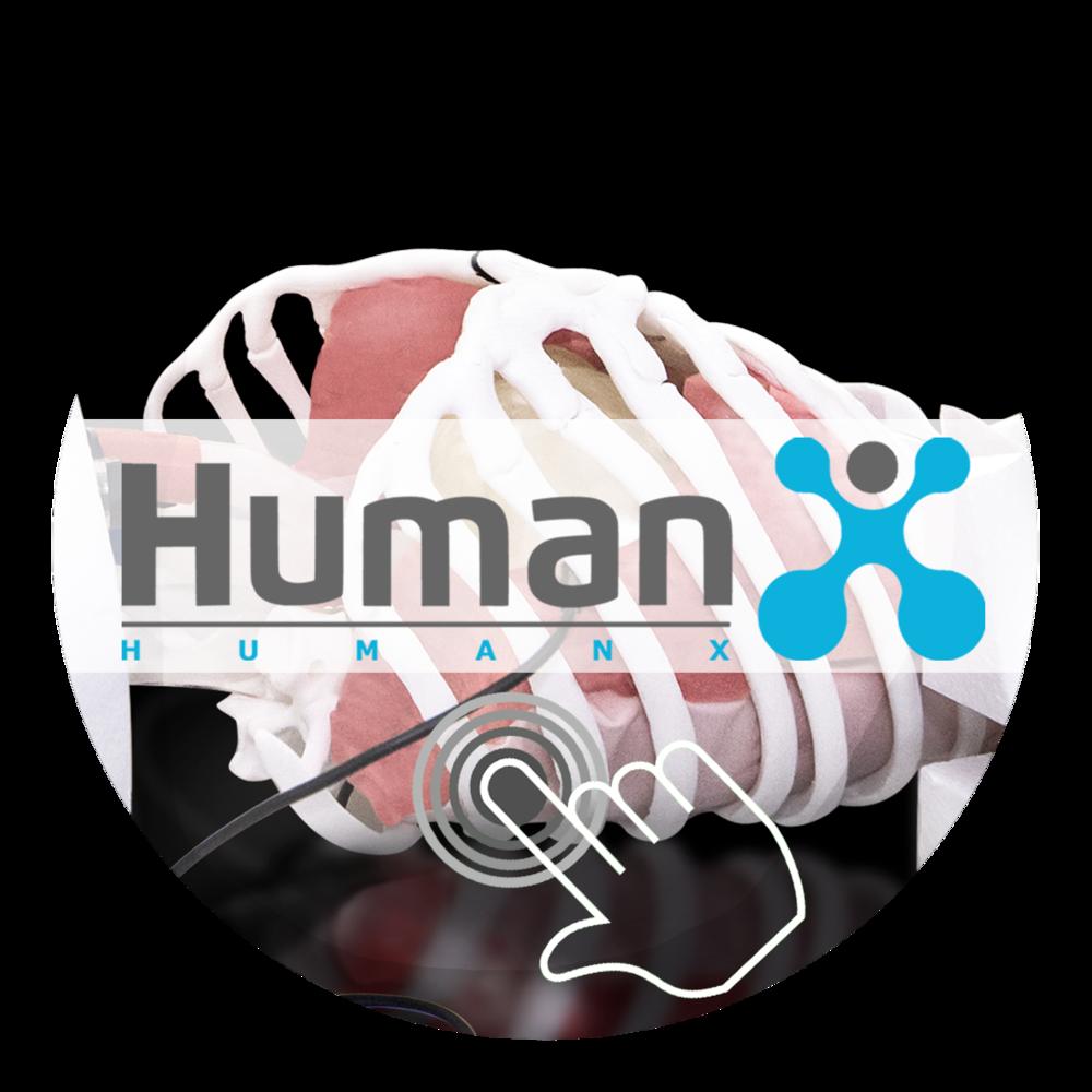 HumanX MMM GmbH