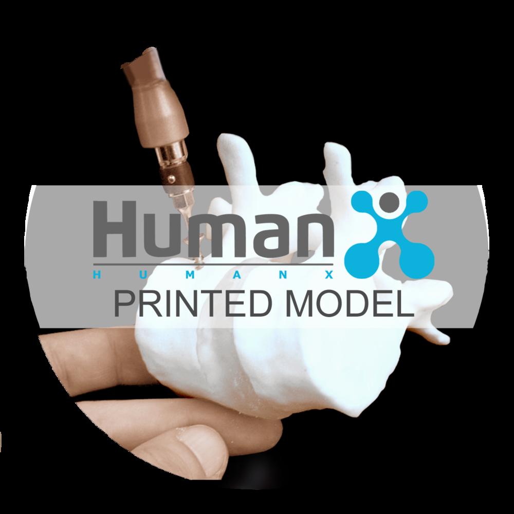 HumanX _printedmodel_Button.png