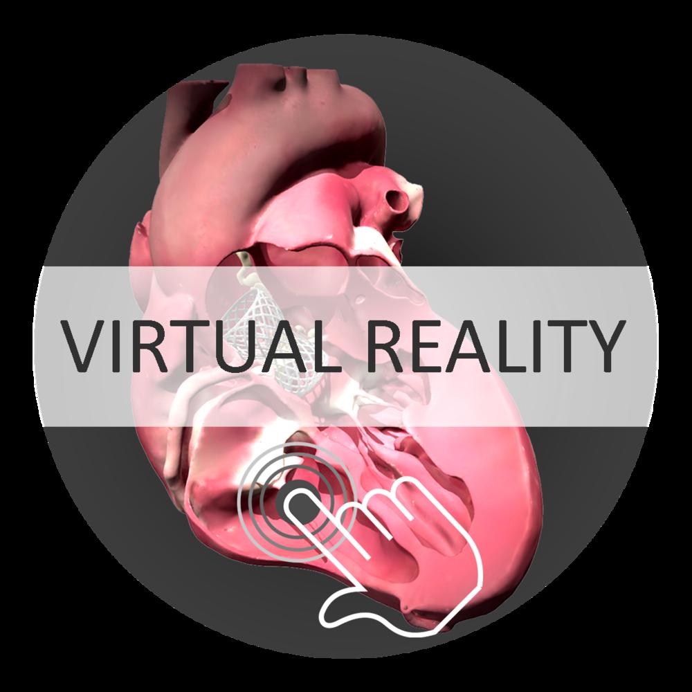 Virtual Reality HumanX