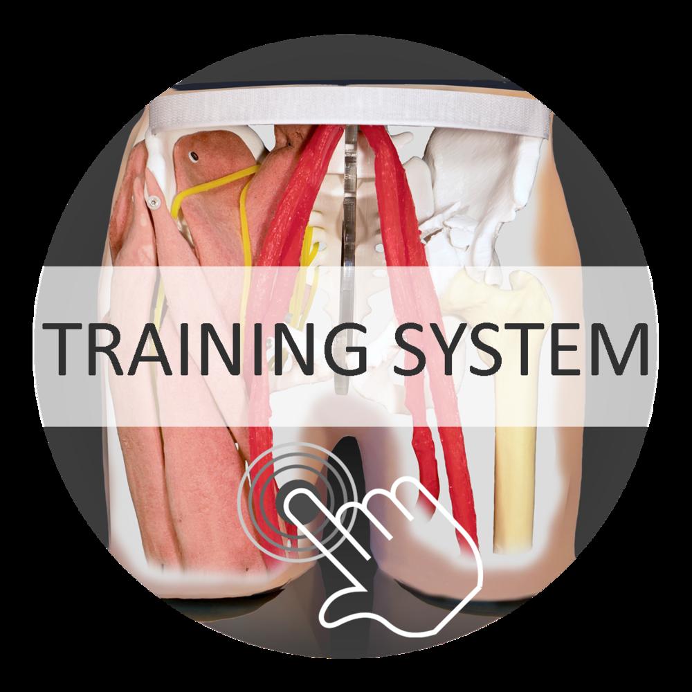 Training system HumanX
