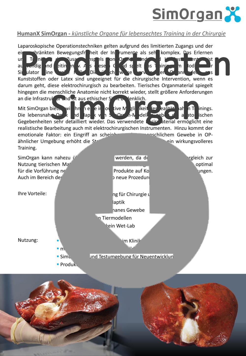 Download ICON SimOrgan Kopie.png