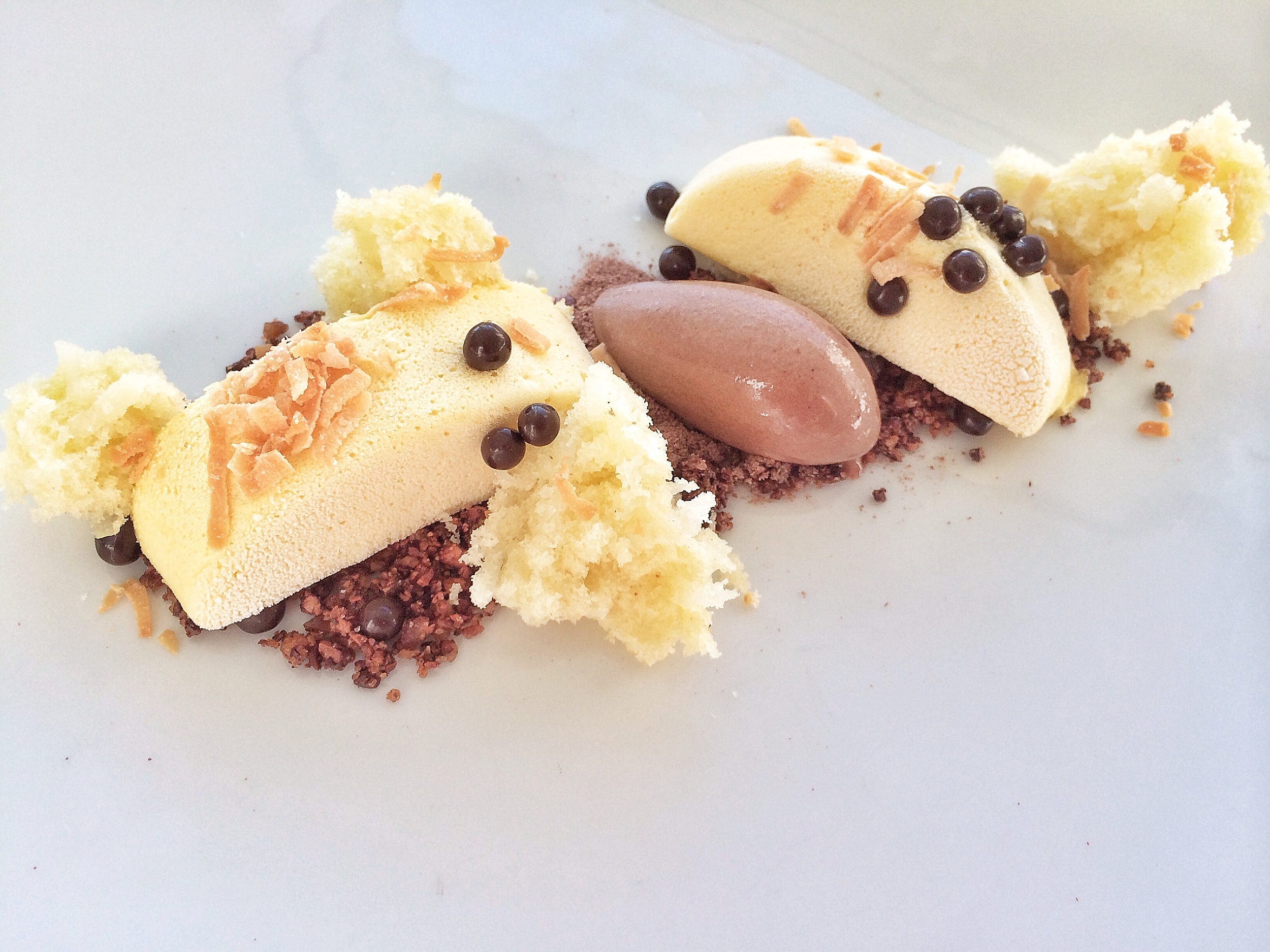 Tasty! Passion fruit semifreddo, cocoa nib crumble, chocolate pearls, coconut cake, toasted coconut, and chocolate ice cream. It goes without saying that everything is Valrhona, my go to chocolate in the kitchen.