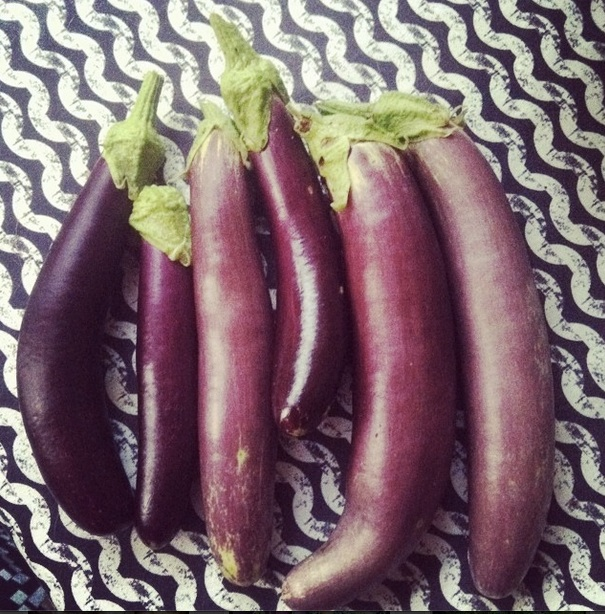 eggplant purple long