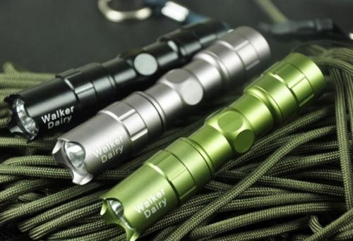 What a Bargain    LED AA Mini EDC Waterproof Flashlight $3.99