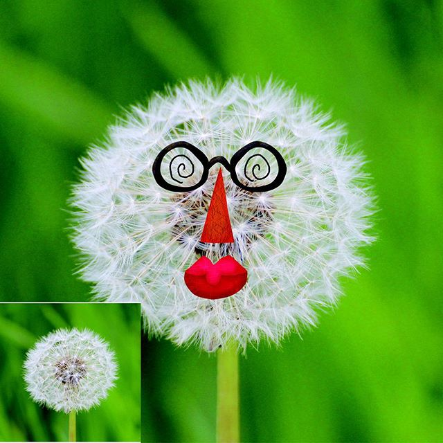 Create variety of fun faces.  Sticker playbook packed with everyday and unexpected objects. #stickerbook #funnyfaces #funforkids #creativity #dreamingdaddy #learningisfun #learnthroughplay #learningthroughplay #kidsfun #kidsbooks #dandelion #socialskills #preschool #playwithphoto #playandlearn #stickers #makeface