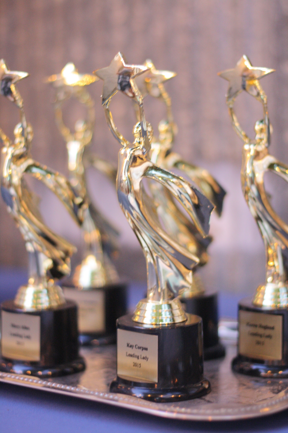 Trophies for our Leading Ladies of 2015