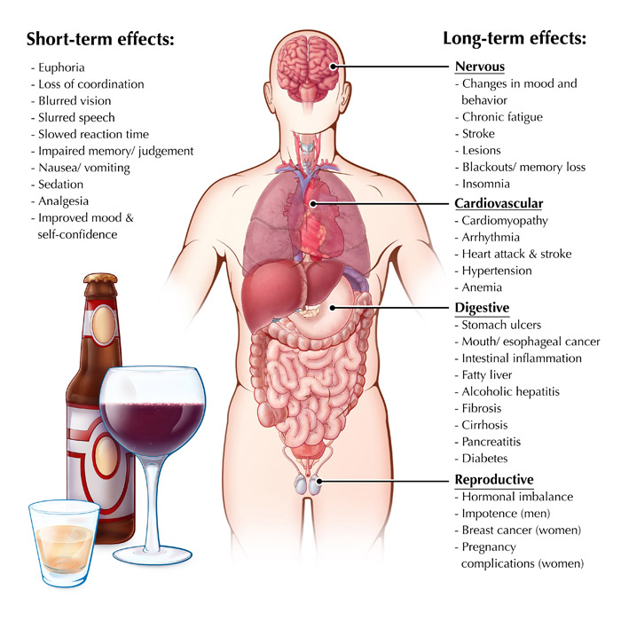Effects of Alcohol Consumption
