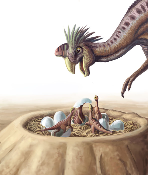 Oviraptor and Nest
