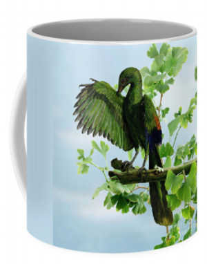 Archeopteryx mug