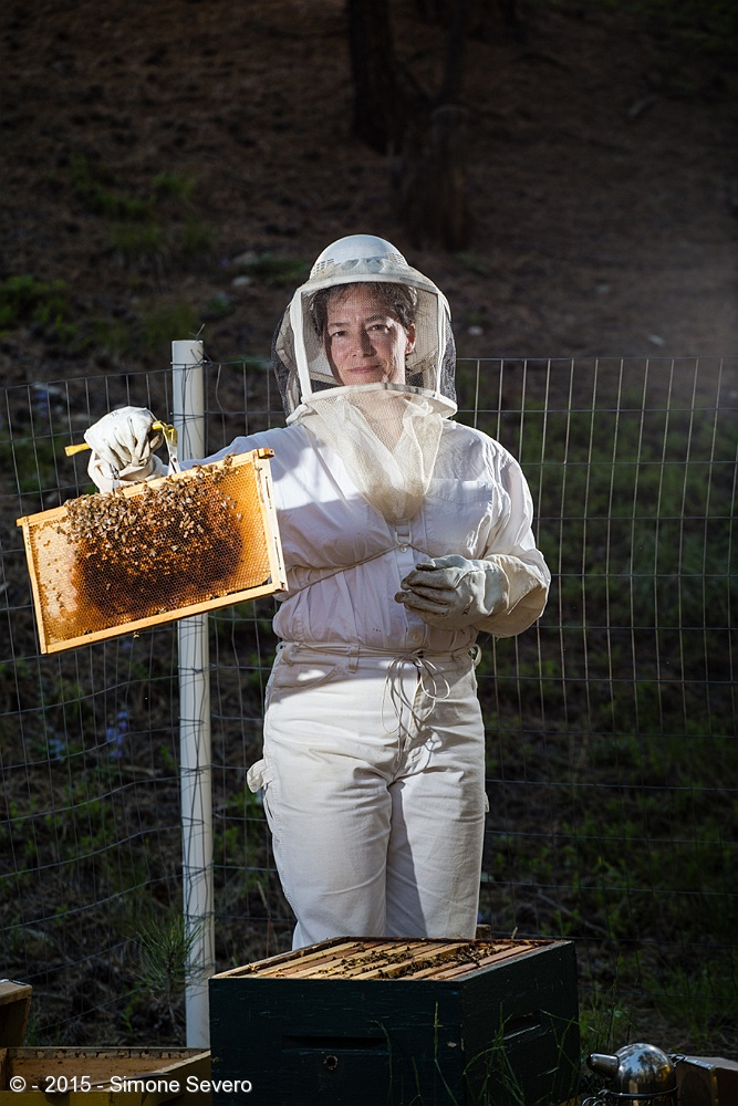 Peggy is a bee keeper. She does triathlon. A woman of many talents. She started into bees when her kids were young, almost 10 years ago. She said she took a class about bees and got a starter kit to start being a bee keeper. She grew up in Virginia, ended up in California and she has been here in Colorado for many years now. There is enough honey for her family and a few friends from her hives. She stated that there is no pesticides because  bees don't last with them and she does not want poison in her honey. After  her portrait, she hosted me with cheese, crackers, fruits, and champagne. We had a great time in her company.   Photographing her was a big challenge because I am petrified by bees. I dressed up like an astronaut and stayed many feet away (20 or 30) with a zoom lens to create her portrait with the bees. There were two flashes used in her portrait: one coming from the right of the picture with no modifier, and the main light camera left, also without any modifier.