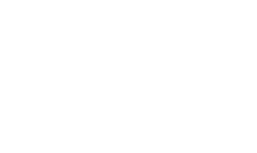 Bialy's Wellness Foundation
