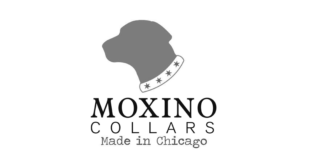 Moxino Collars   www.moxinocollars.com