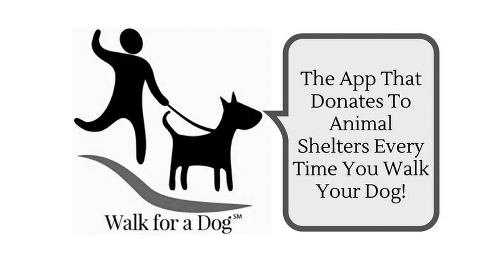 "Go to Wooftrax.com, download the app, and select Bialy's Wellness Foundation as the ""Walking for"" benefactor. You will then add the dogs you walk. When you are ready to go for a walk, open the application, click start and you will earn money for Bialy's Wellness Foundation!"