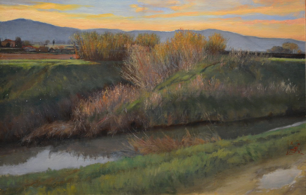 Tuscan Winter Canal Rushes