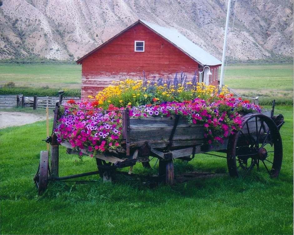 A_flowers.jpg