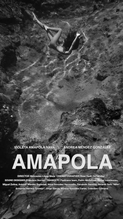 Amapola Cartel 1.jpg