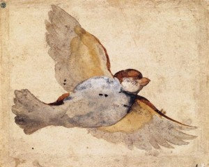 Udine, Giovanni da, 1487-1564. Study of a Flying Sparrow, from Art in the Christian Tradition, a project of the Vanderbilt Divinity Library, Nashville, TN. http://diglib.library.vanderbilt.edu/act-imagelink.pl?RC=55871 [retrieved June 20, 2014]. Original source: http://commons.wikimedia.org/wiki/File:Giovanni_Da_Udine_-_Study_of_a_Flying_Sparrow_-_WGA09431.jpg.