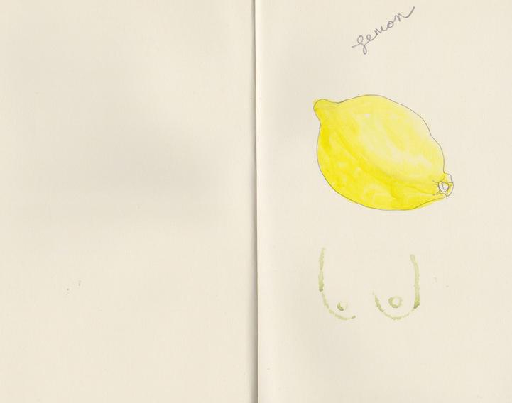 lemon+boobsUSE.jpg