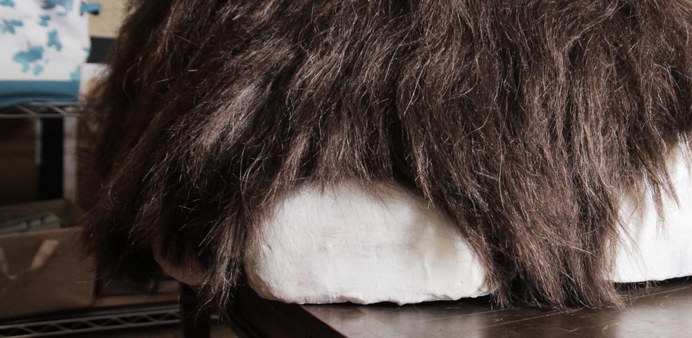 Mammoth Foot Reconstruction