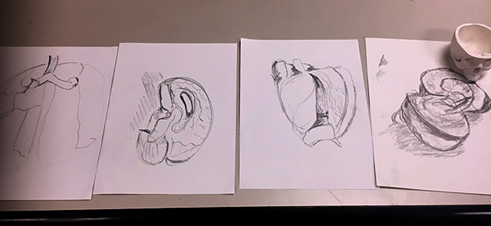 An example of a DMU student's drawings. Her first drawing is on the left and her final drawing is on the right.