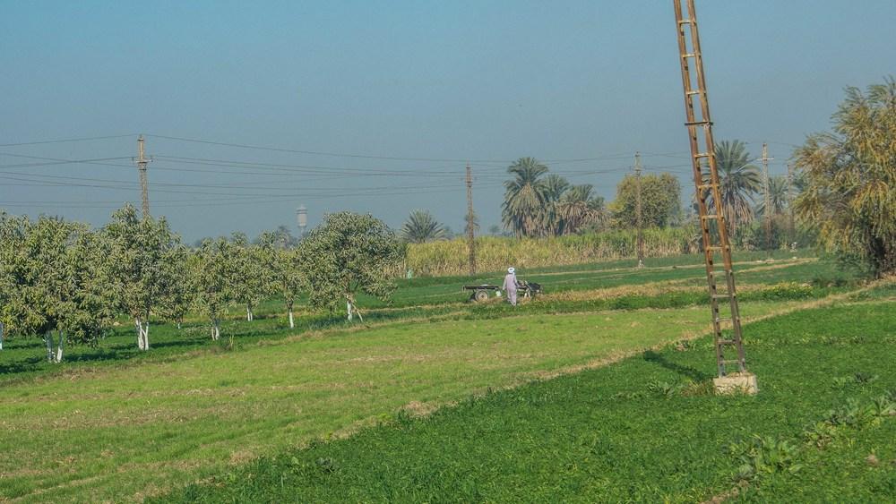 egypt photos-1170406.jpg