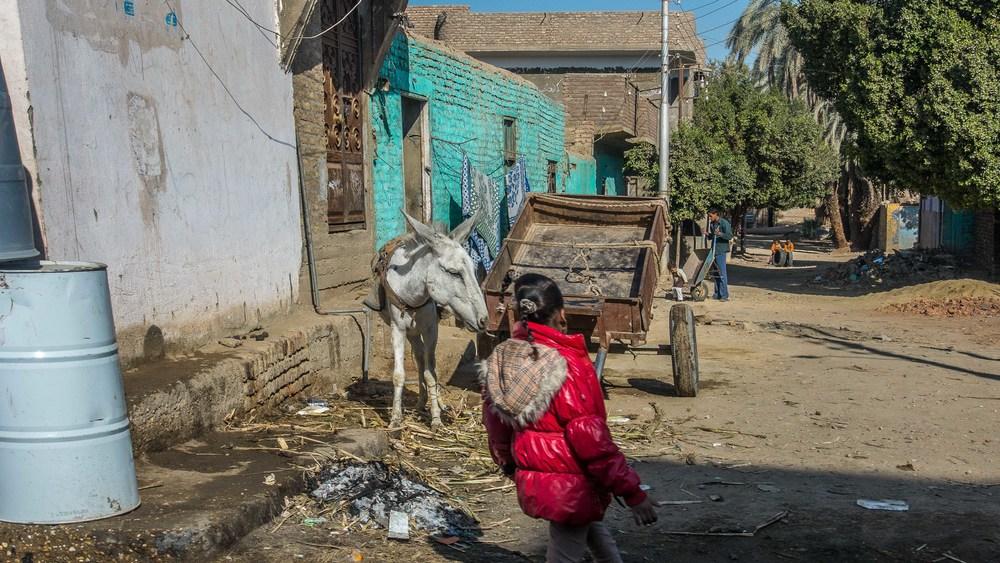 egypt photos-1170404.jpg