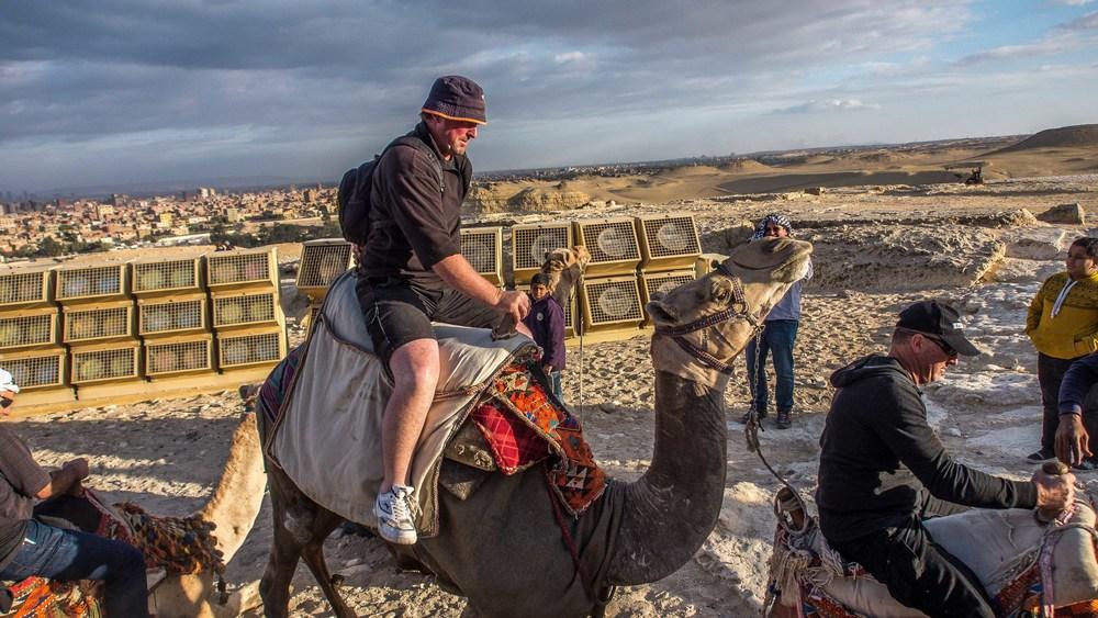 egypt photos-1170178.jpg