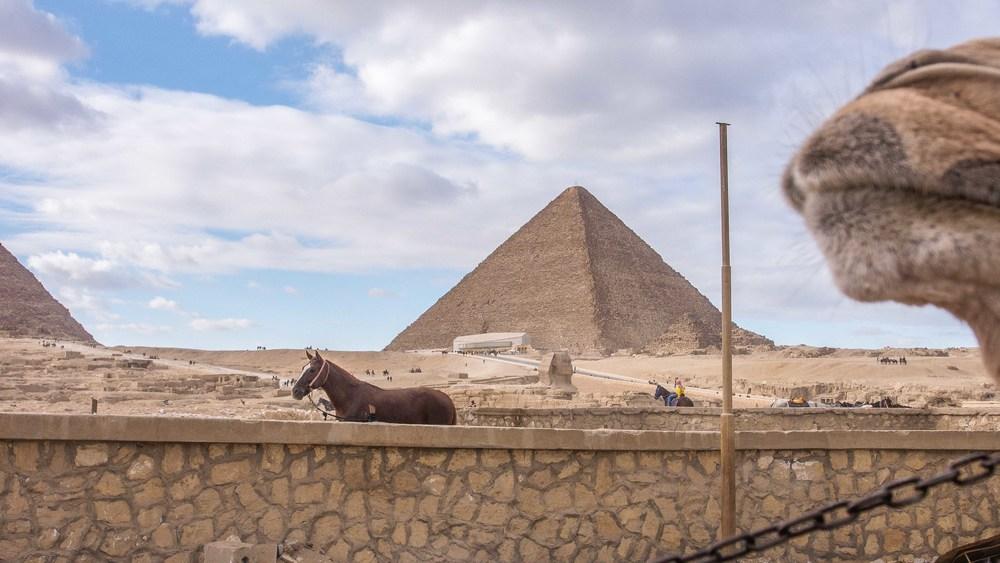egypt photos-1170044.jpg