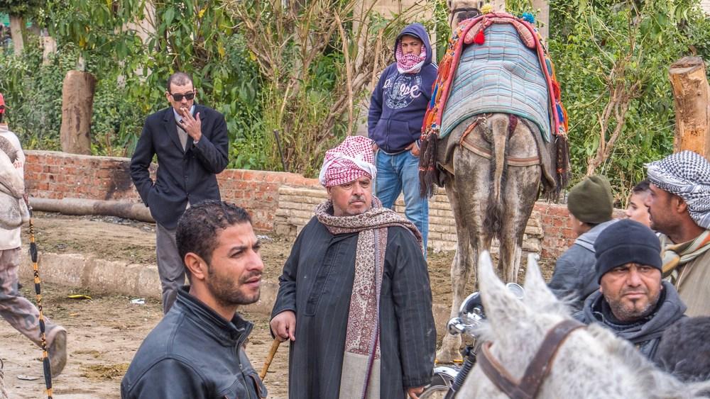 egypt photos-1160977.jpg
