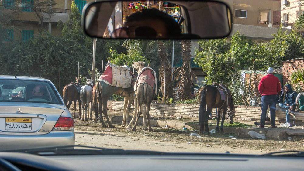 egypt photos-1160916.jpg