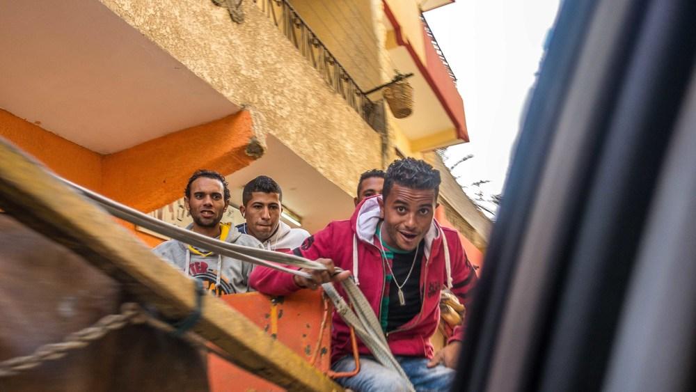 egypt photos-1160908.jpg