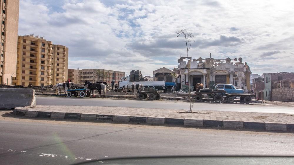 egypt photos-1160780.jpg