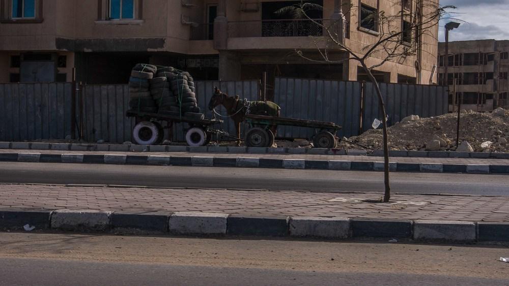 egypt photos-1160779.jpg