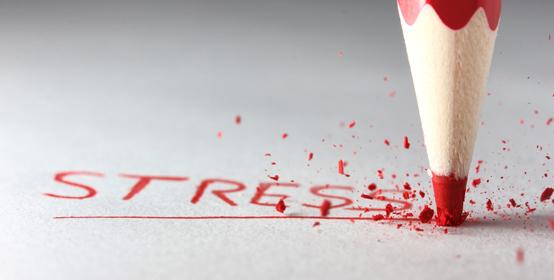 stress web.jpg