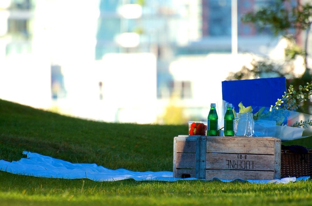 surprise-me-granville-island-picnic