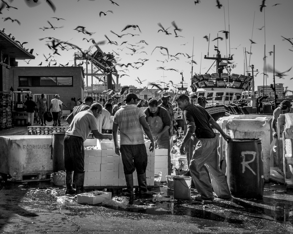 Tim Clinch Photography Black And White Photos Gallery
