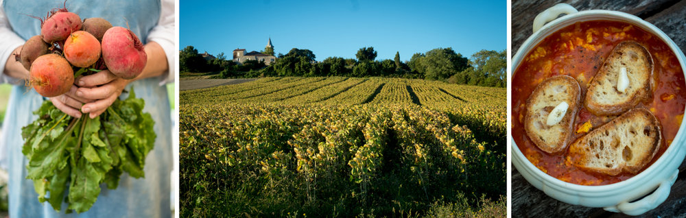 Food and travel photos by Tim Clinch in Gascony, France