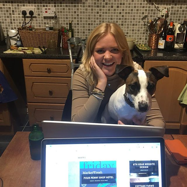 We gots ourself a new employee! Meet #Dory the client loving #jackrussell, we hope she gets to meet you guys soon! #dog #websitedog #warwickshire #jackrussellterrier #funny #fun