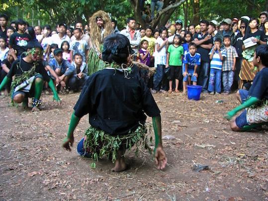 WIJI THUKUL / GROWING SEEDS. Dusun Karangbalong Desa Mbener Kec. Tengaran Kab. Semarang Central Java.