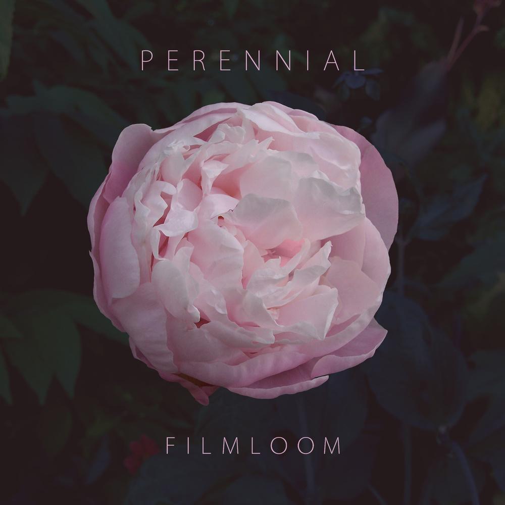 Filmloom - Perennial