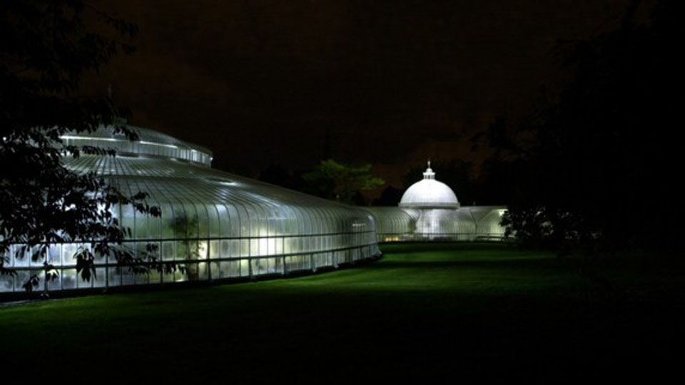 Lightfolio_Kibble_Palace_1.jpg