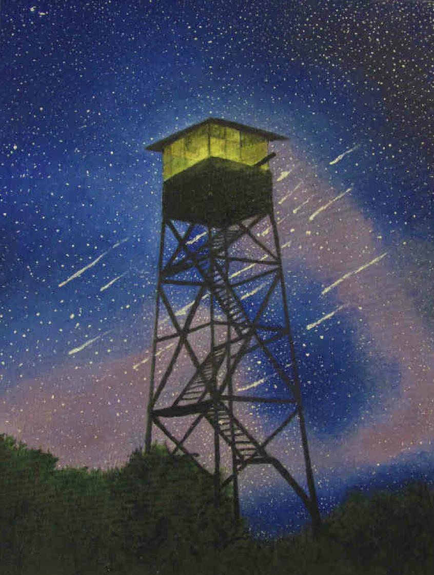 """""""Summer Nights"""" by Luna Hattori $200"""