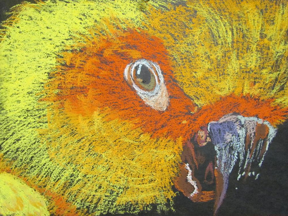 """""""Parakeet"""" by Zienna Brissett $100"""