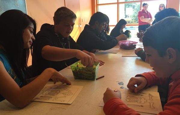 Adoptar el aprendizaje personalizado ha sido un desafío, pero los profesores se han mostrado dispuestos a utilizar el modelo en su salón de clases. - Foto: IDEA