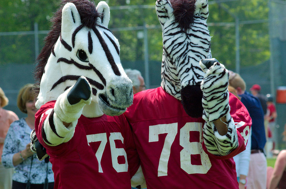 "<div class=""ch"">Mascots on Game Day</div>"